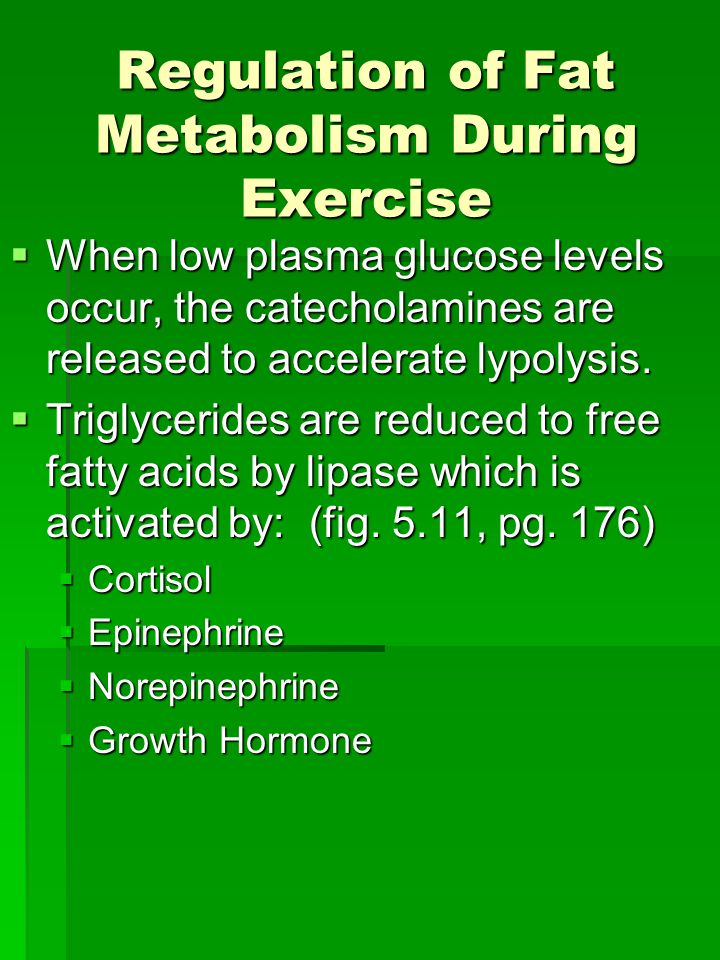 Regulation of Fat Metabolism During Exercise  When low plasma glucose levels occur, the catecholamines are released to accelerate lypolysis.