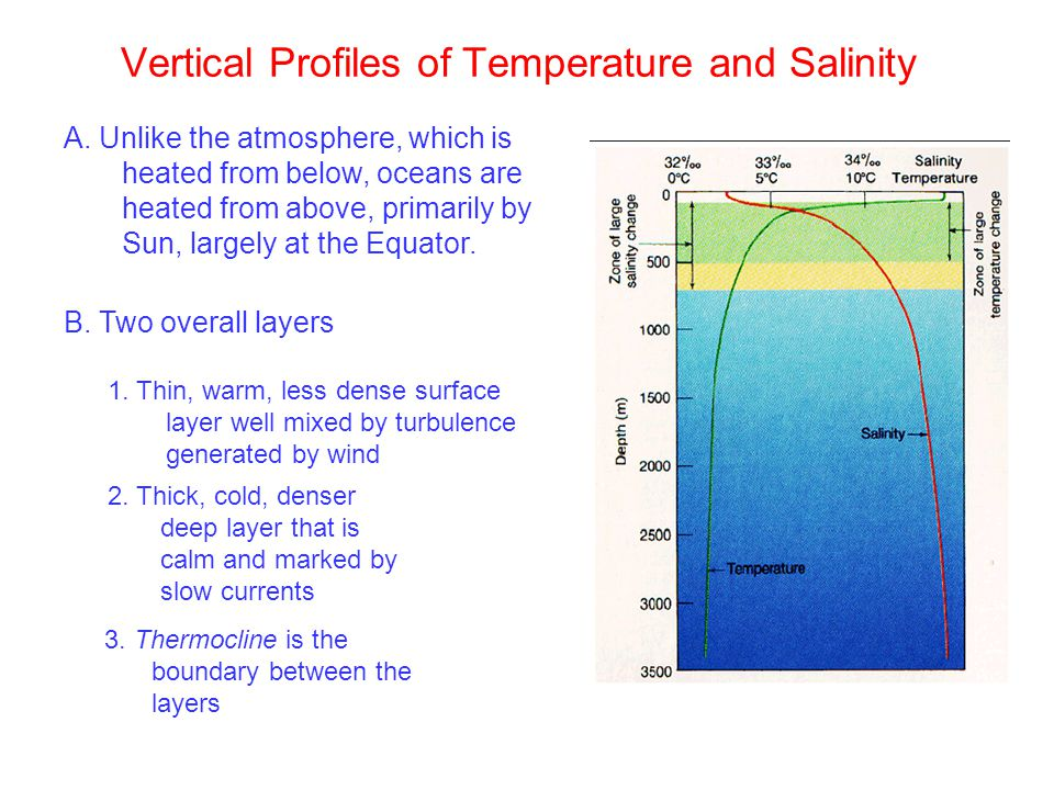 Vertical Profiles of Temperature and Salinity A.