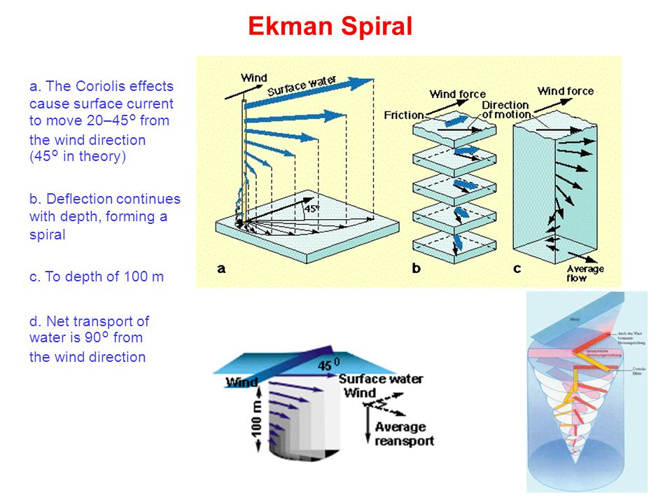 Ekman Spiral c. To depth of 100 m a.