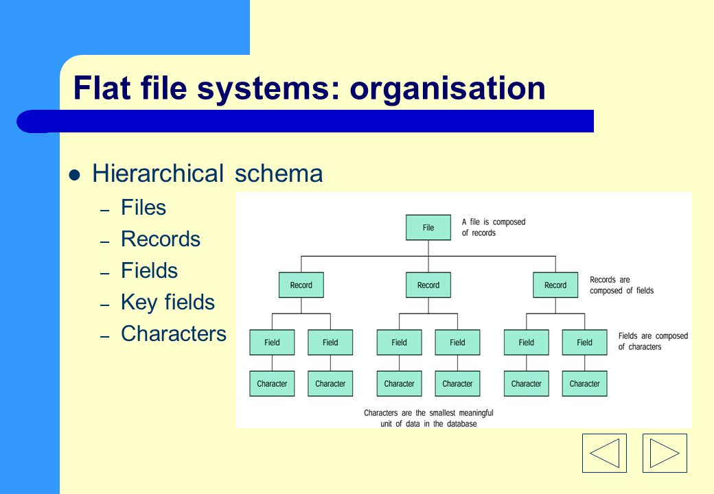 Flat file systems: organisation Hierarchical schema – Files – Records – Fields – Key fields – Characters