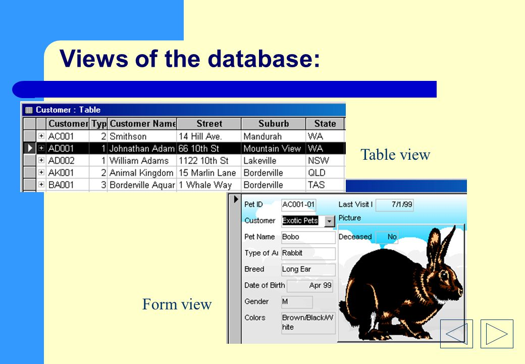 Views of the database: Table view Form view