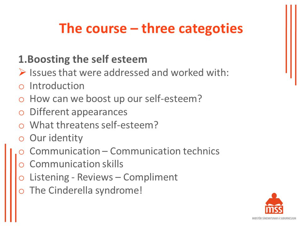 The course – three categoties 1.Boosting the self esteem  Issues that were addressed and worked with: o Introduction o How can we boost up our self-esteem.