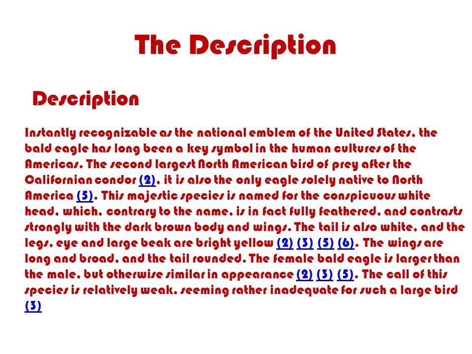 The Description Description Instantly Recognizable As The National