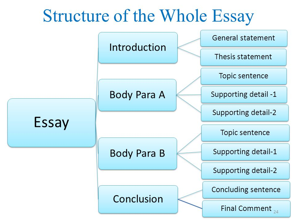 Structure of the Whole Essay Essay Introduction General statementThesis statement Body Para A Topic sentenceSupporting detail -1Supporting detail-2 Body Para B Topic sentenceSupporting detail-1Supporting detail-2 Conclusion Concluding sentenceFinal Comment 24