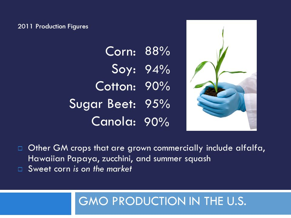 GMO PRODUCTION IN THE U.S.