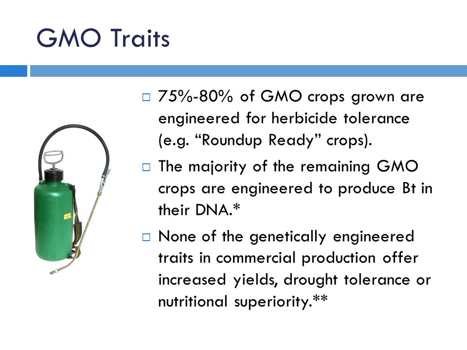 GMO Traits  75%-80% of GMO crops grown are engineered for herbicide tolerance (e.g.