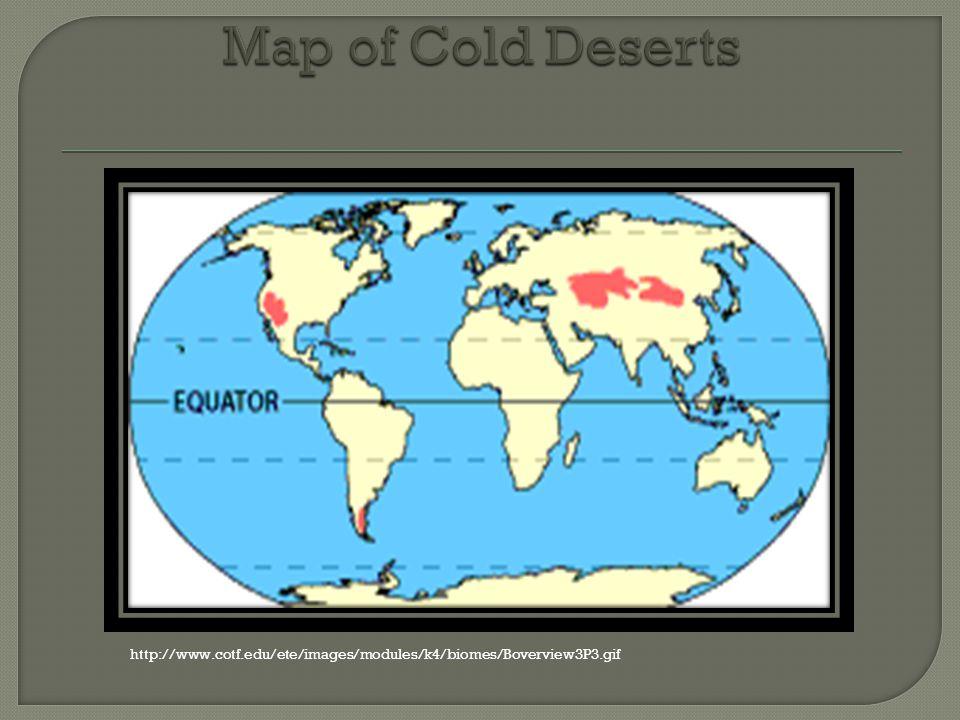 Sydnie Racine White 7 The Cold Deserts Main Trait Are The Cold