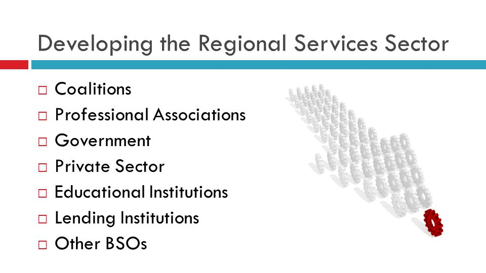 Developing the Regional Services Sector  Coalitions  Professional Associations  Government  Private Sector  Educational Institutions  Lending Institutions  Other BSOs