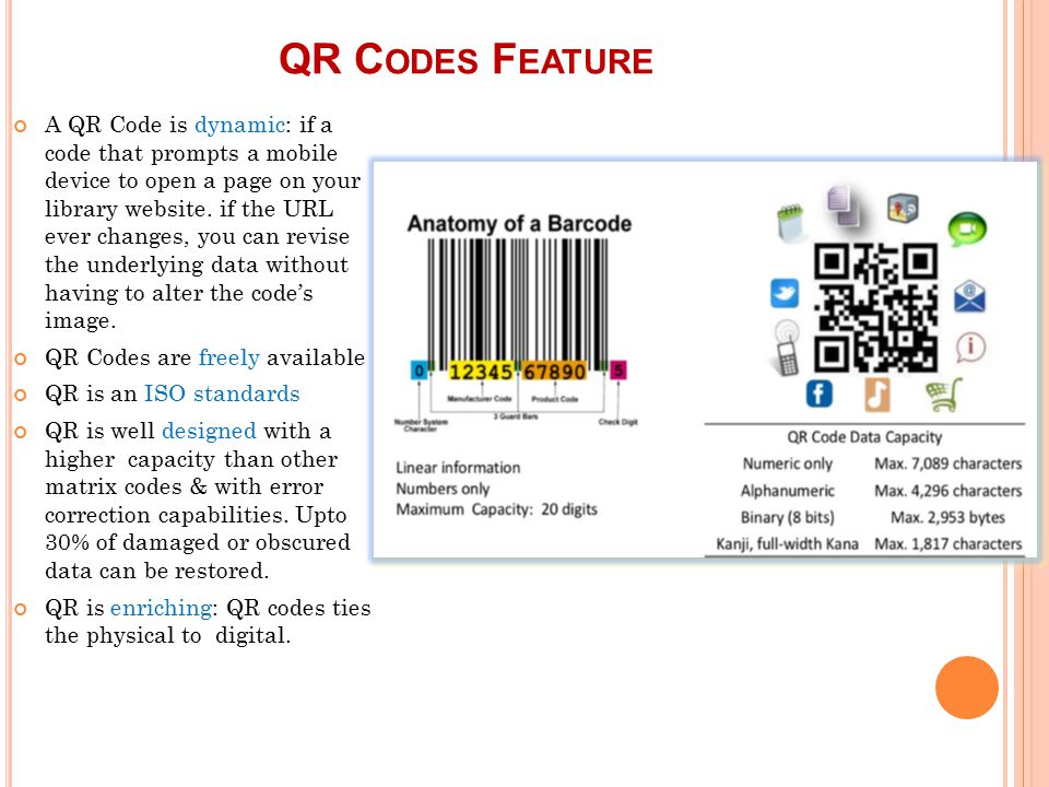 Fantastic Qr Code Anatomy Inspiration - Anatomy And Physiology ...