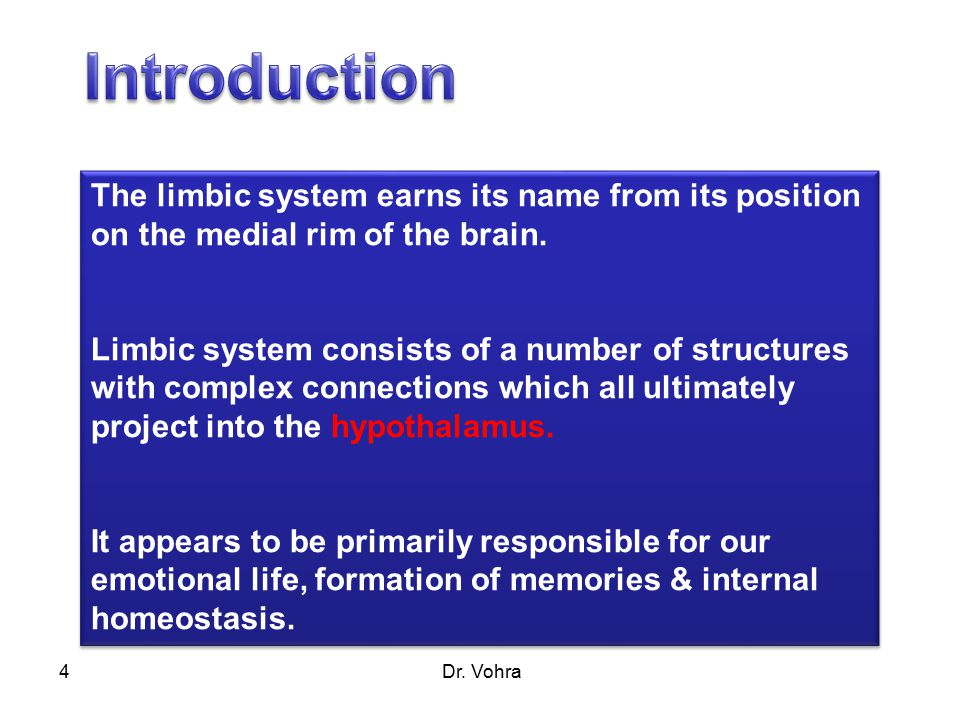 Dr. Vohra4 The limbic system earns its name from its position on the medial rim of the brain.
