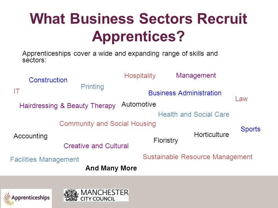 What Business Sectors Recruit Apprentices.