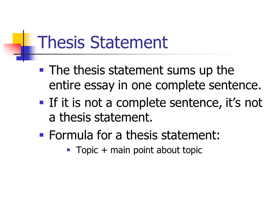 Thesis Statement  The thesis statement sums up the entire essay in one complete sentence.