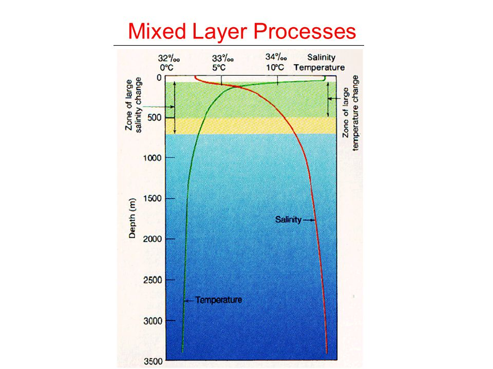 Mixed Layer Processes