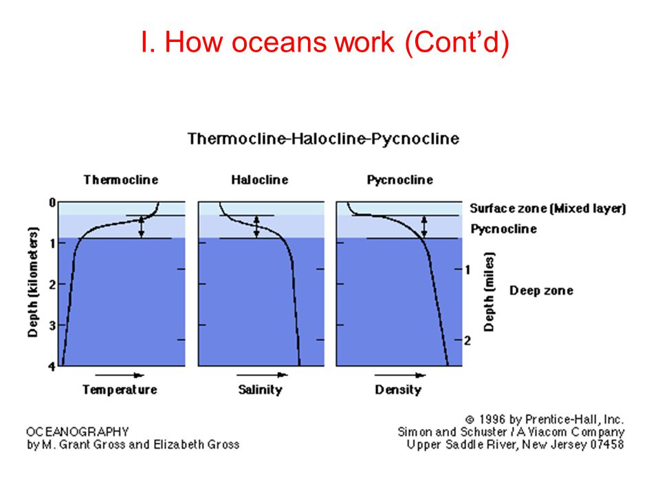 I. How oceans work (Cont'd)