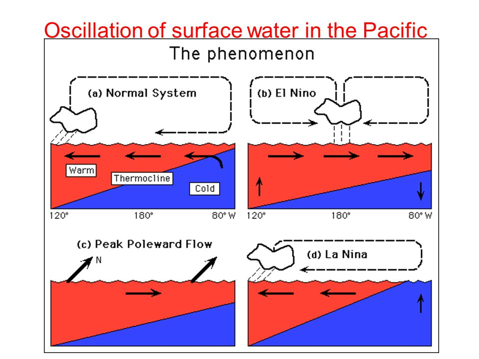 Oscillation of surface water in the Pacific