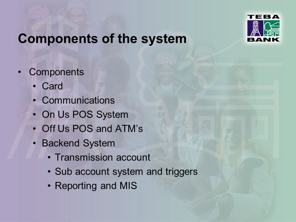 Problem components Pricing and cost structure Point of Sales distribution Participation in national payments system Telecommunications – coverage and cost Systems – switching, databases etc.