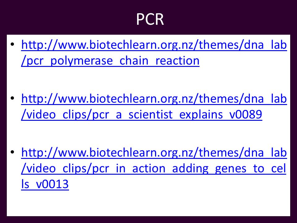 PCR   /pcr_polymerase_chain_reaction   /pcr_polymerase_chain_reaction   /video_clips/pcr_a_scientist_explains_v /video_clips/pcr_a_scientist_explains_v /video_clips/pcr_in_action_adding_genes_to_cel ls_v /video_clips/pcr_in_action_adding_genes_to_cel ls_v0013