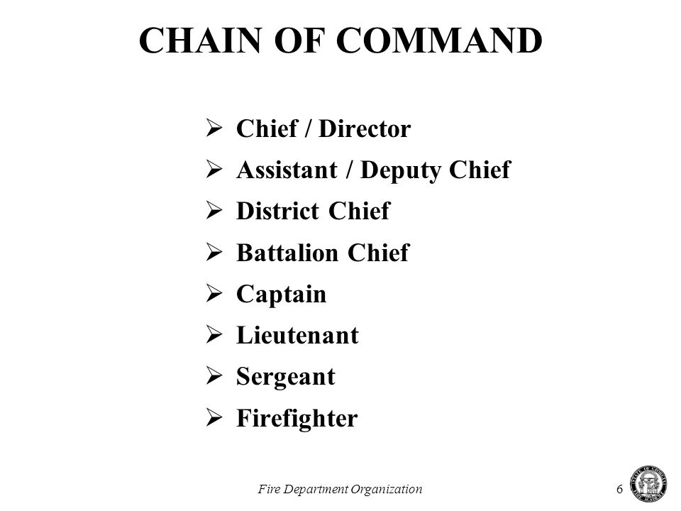Fire Department Organization6 CHAIN OF COMMAND  Chief / Director  Assistant / Deputy Chief  District Chief  Battalion Chief  Captain  Lieutenant  Sergeant  Firefighter