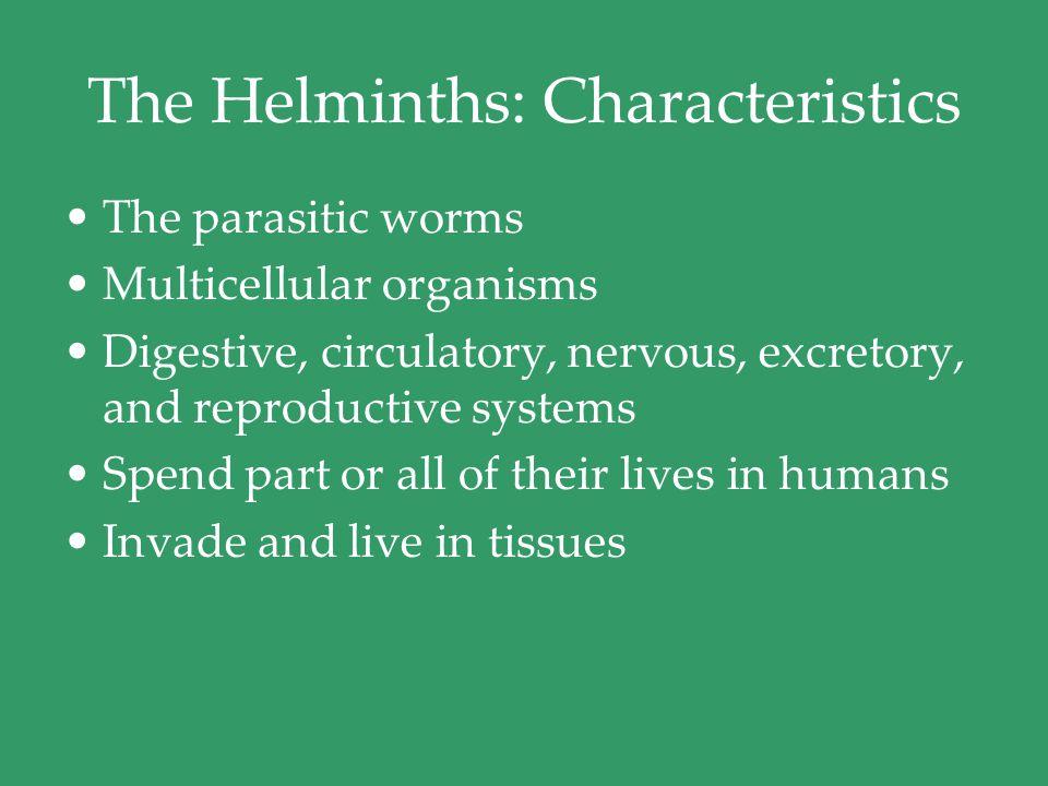 parasitic helminths characteristics gastric cancer krukenberg