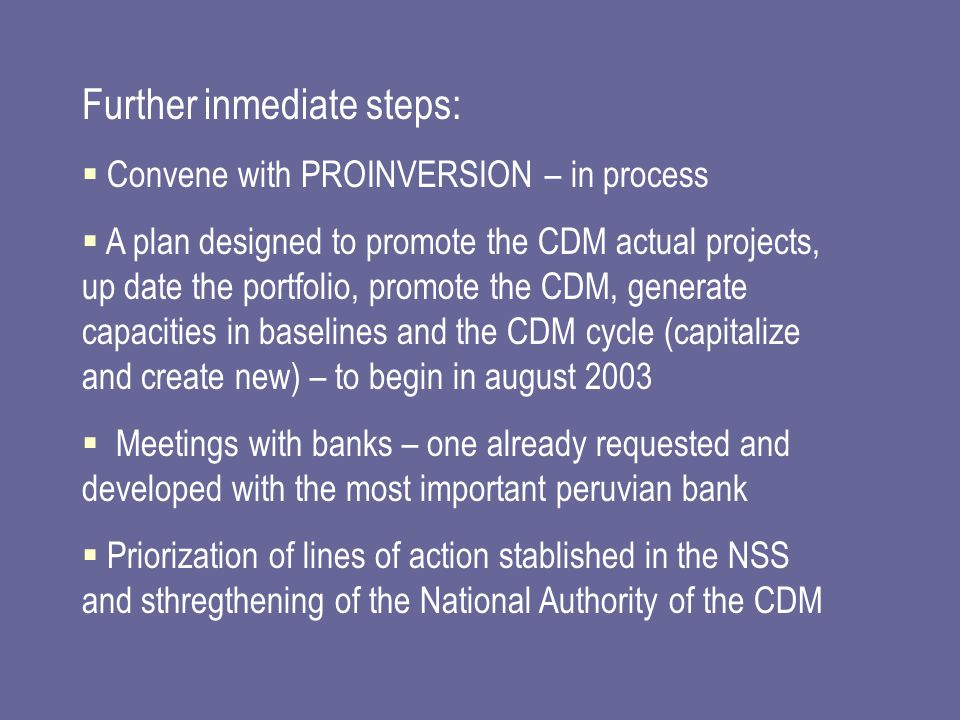 Further inmediate steps:  Convene with PROINVERSION – in process  A plan designed to promote the CDM actual projects, up date the portfolio, promote the CDM, generate capacities in baselines and the CDM cycle (capitalize and create new) – to begin in august 2003  Meetings with banks – one already requested and developed with the most important peruvian bank  Priorization of lines of action stablished in the NSS and sthregthening of the National Authority of the CDM