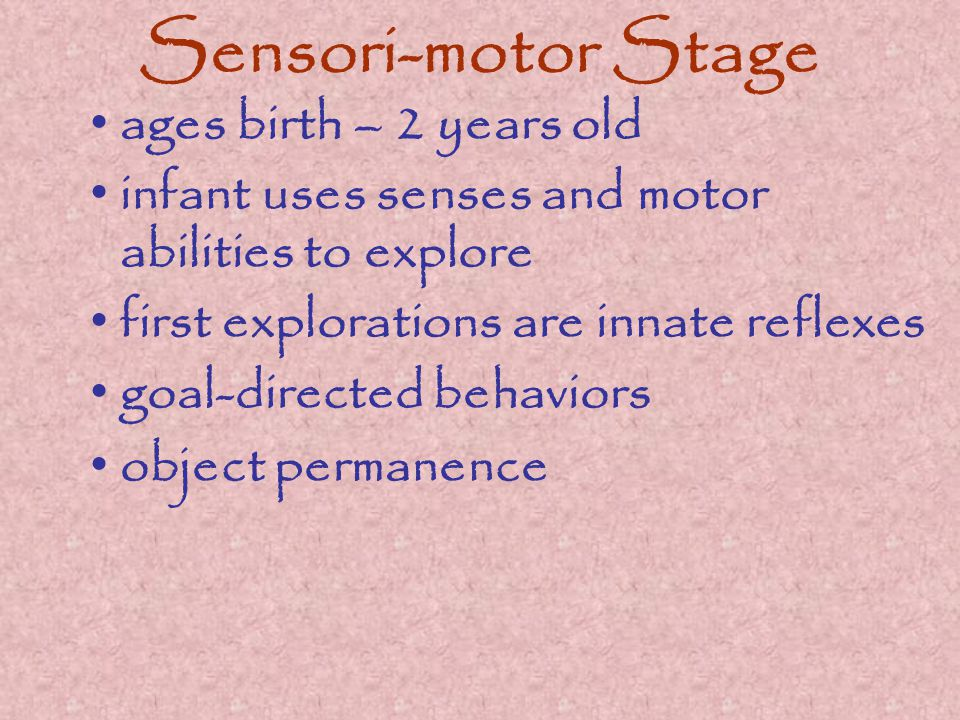Sensori-motor Stage ages birth – 2 years old infant uses senses and motor abilities to explore first explorations are innate reflexes goal-directed behaviors object permanence