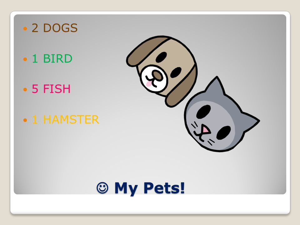 My Pets! My Pets! 2 DOGS 1 BIRD 5 FISH 1 HAMSTER
