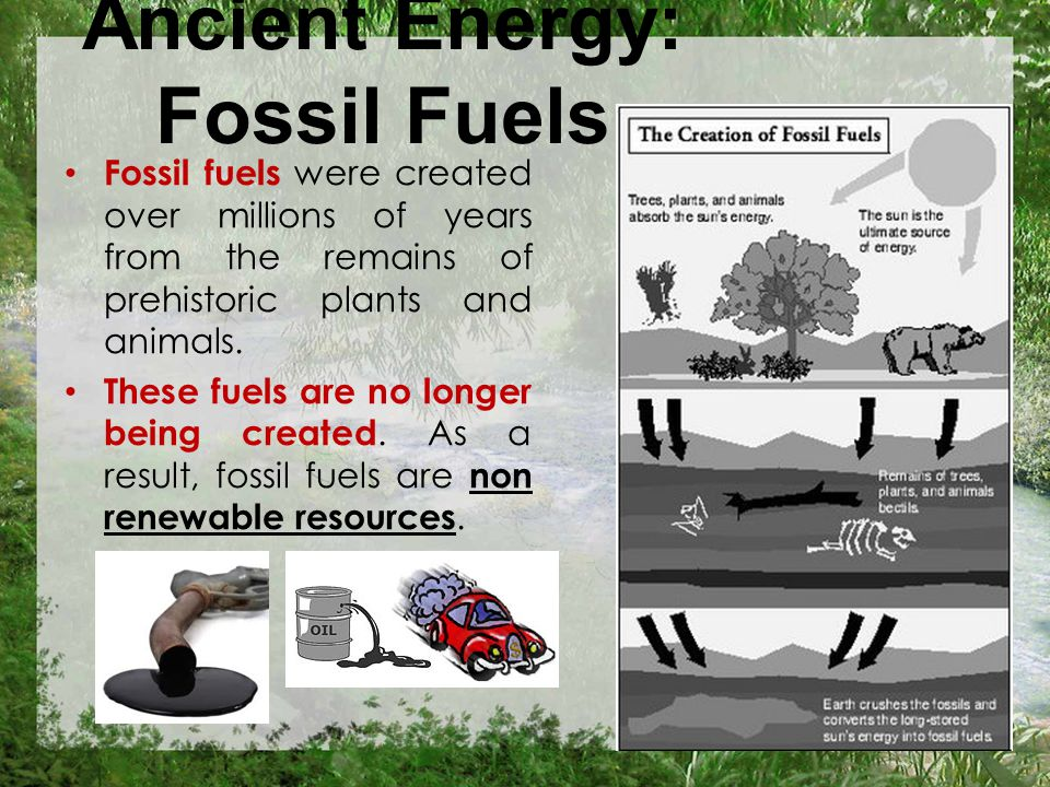 Ancient Energy: Fossil Fuels Fossil fuels were created over millions of years from the remains of prehistoric plants and animals.