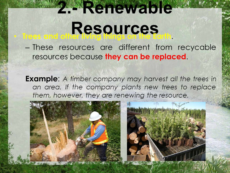 2.- Renewable Resources Trees and other living things on the Earth.