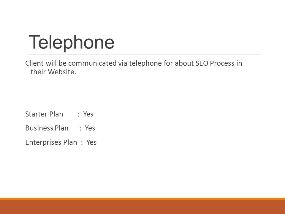 Telephone Client will be communicated via telephone for about SEO Process in their Website.
