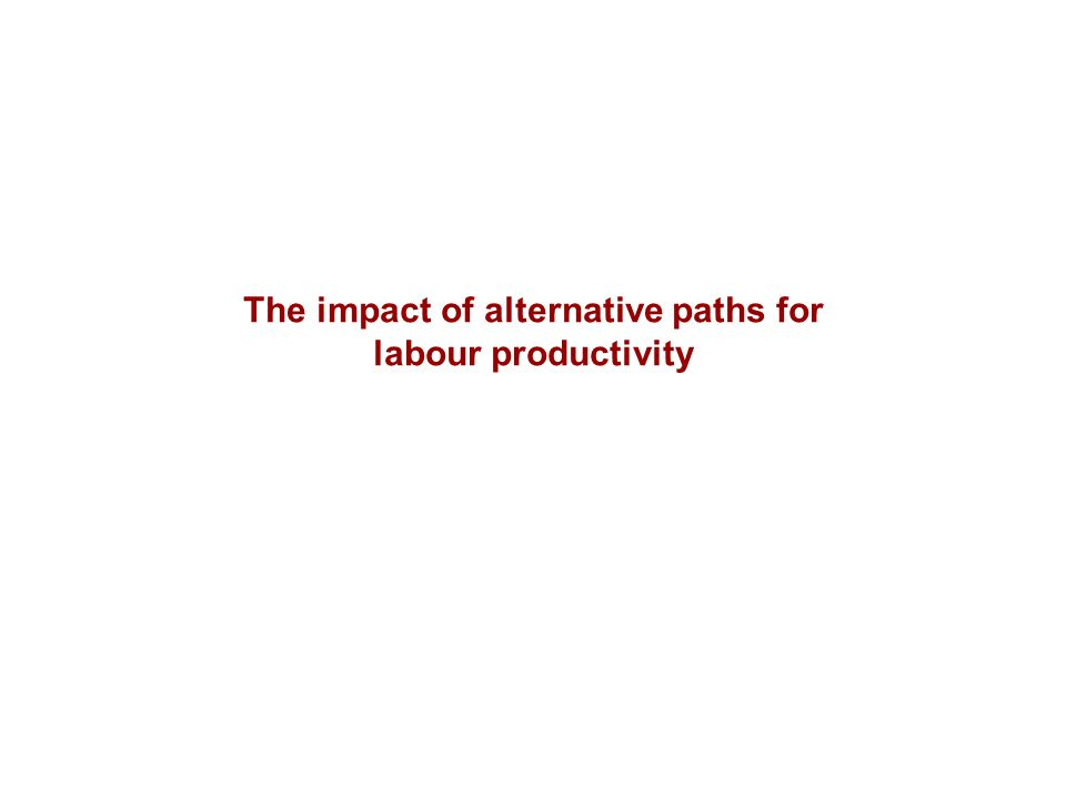 The impact of alternative paths for labour productivity