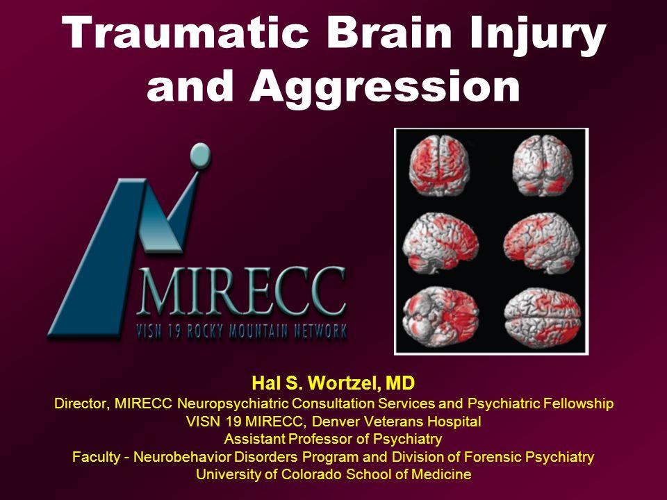 Traumatic Brain Injury and Aggression Hal S  Wortzel, MD Director