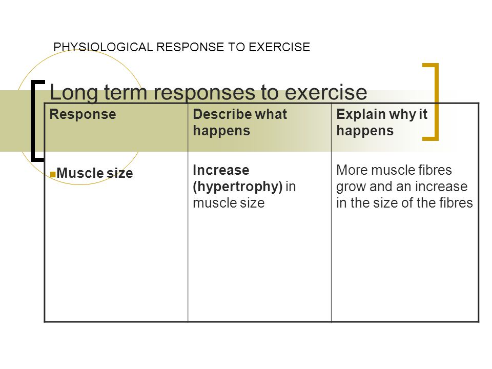 Long term responses to exercise PHYSIOLOGICAL RESPONSE TO EXERCISE Response Muscle size Describe what happens Increase (hypertrophy) in muscle size Explain why it happens More muscle fibres grow and an increase in the size of the fibres