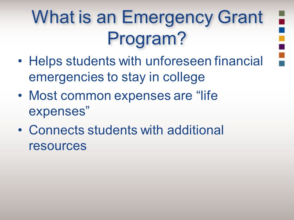What is an Emergency Grant Program.