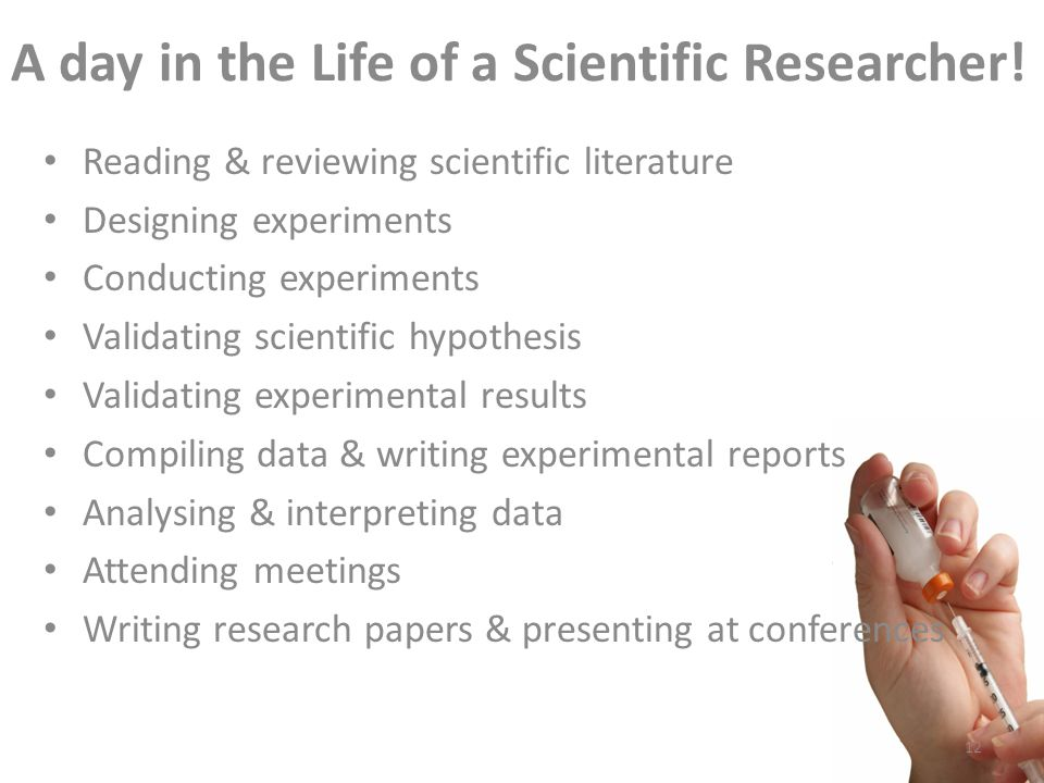 A day in the Life of a Scientific Researcher.