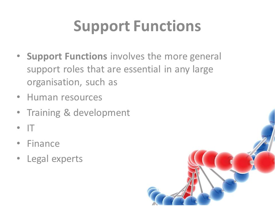 Support Functions Support Functions involves the more general support roles that are essential in any large organisation, such as Human resources Training & development IT Finance Legal experts