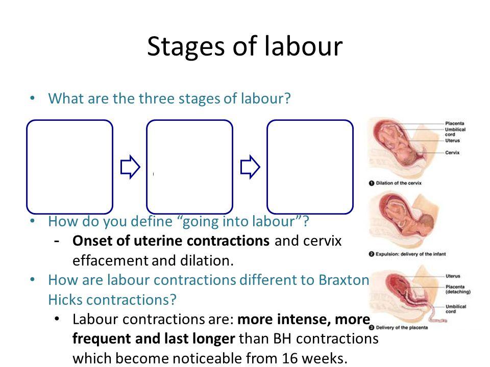 Stages of labour Karina Bennett & Melissa Brittle  - ppt download