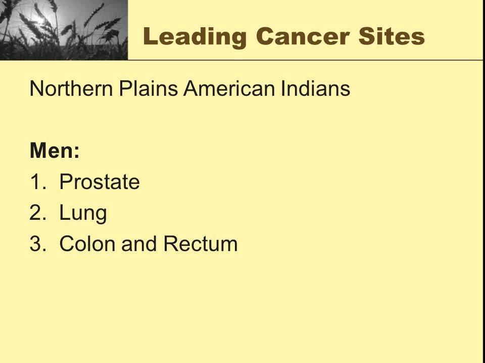Leading Cancer Sites Northern Plains American Indians Men: 1. Prostate 2. Lung 3. Colon and Rectum