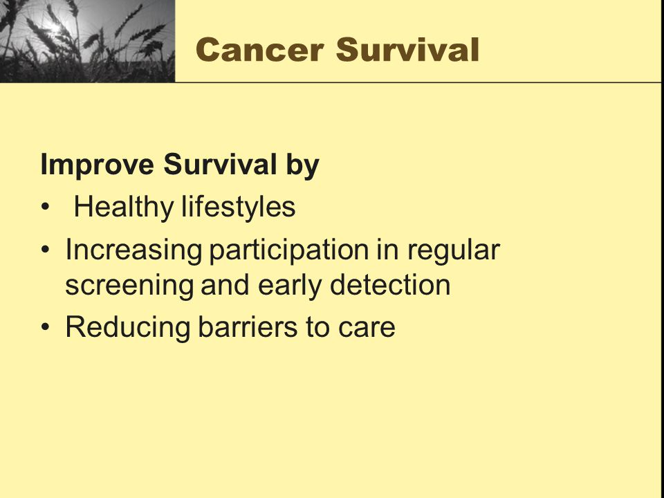 Cancer Survival Improve Survival by Healthy lifestyles Increasing participation in regular screening and early detection Reducing barriers to care