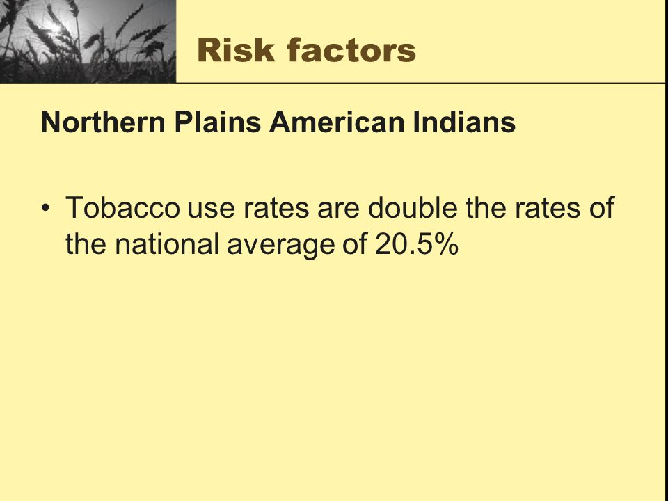 Risk factors Northern Plains American Indians Tobacco use rates are double the rates of the national average of 20.5%