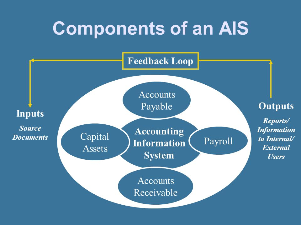 7 Components Of An AIS Accounting Information System Accounts Payable Payroll Capital Assets Receivable Inputs Source Documents Outputs Reports