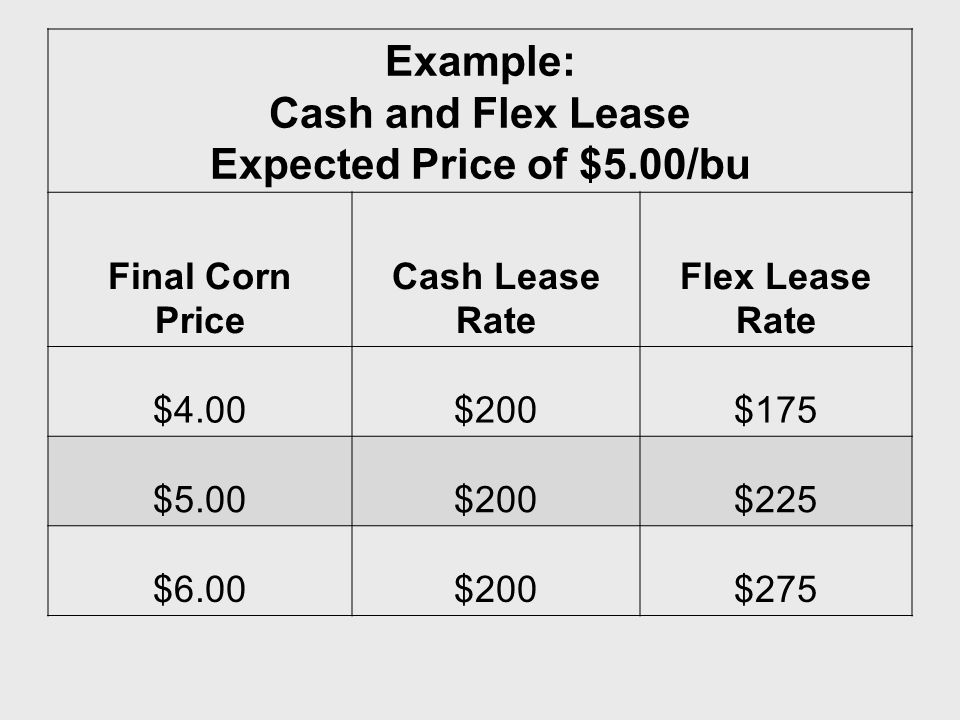Example: Cash and Flex Lease Expected Price of $5.00/bu Final Corn Price Cash Lease Rate Flex Lease Rate $4.00$200$175 $5.00$200$225 $6.00$200$275