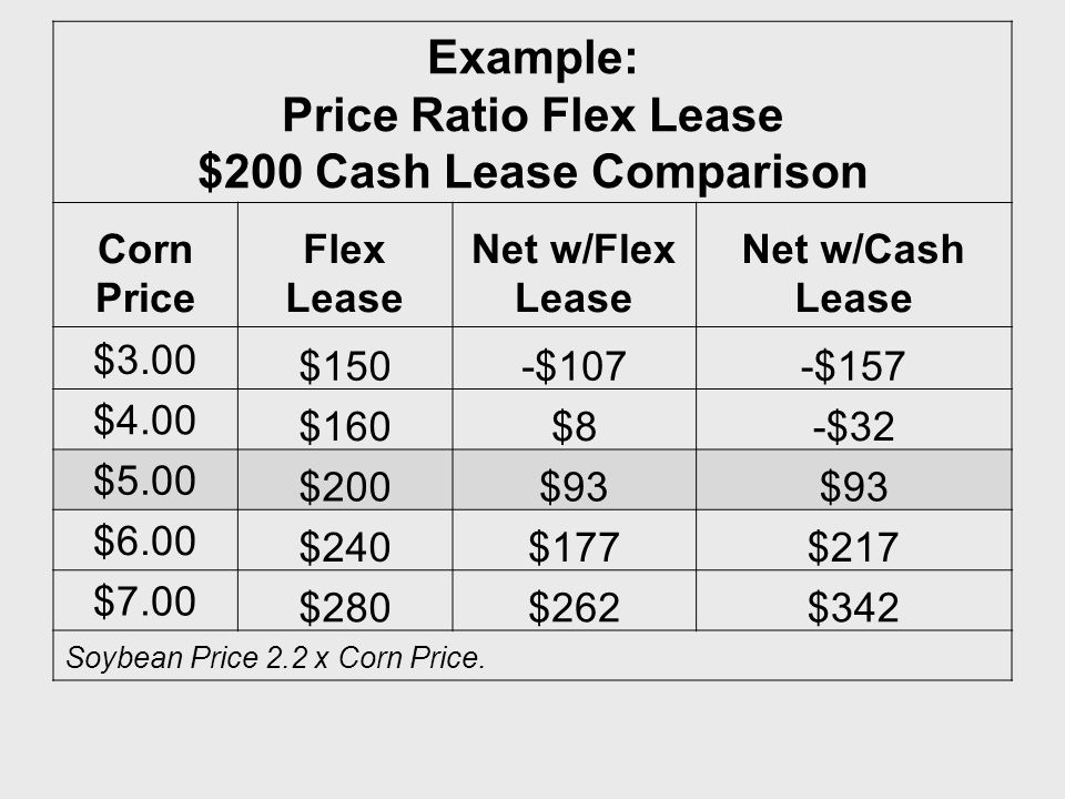 Example: Price Ratio Flex Lease $200 Cash Lease Comparison Corn Price Flex Lease Net w/Flex Lease Net w/Cash Lease $3.00 $150-$107-$157 $4.00 $160$8-$32 $5.00 $200$93 $6.00 $240$177$217 $7.00 $280$262$342 Soybean Price 2.2 x Corn Price.