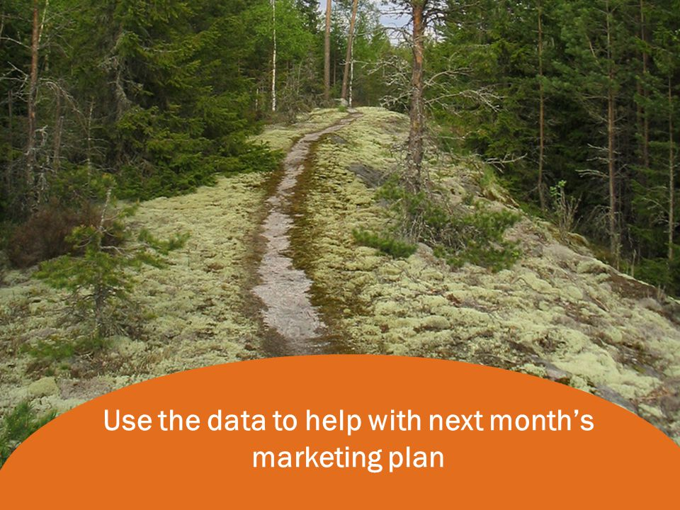 Use the data to help with next month's marketing plan