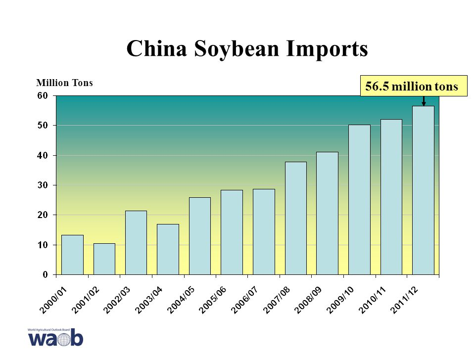 China Soybean Imports Million Tons 56.5 million tons