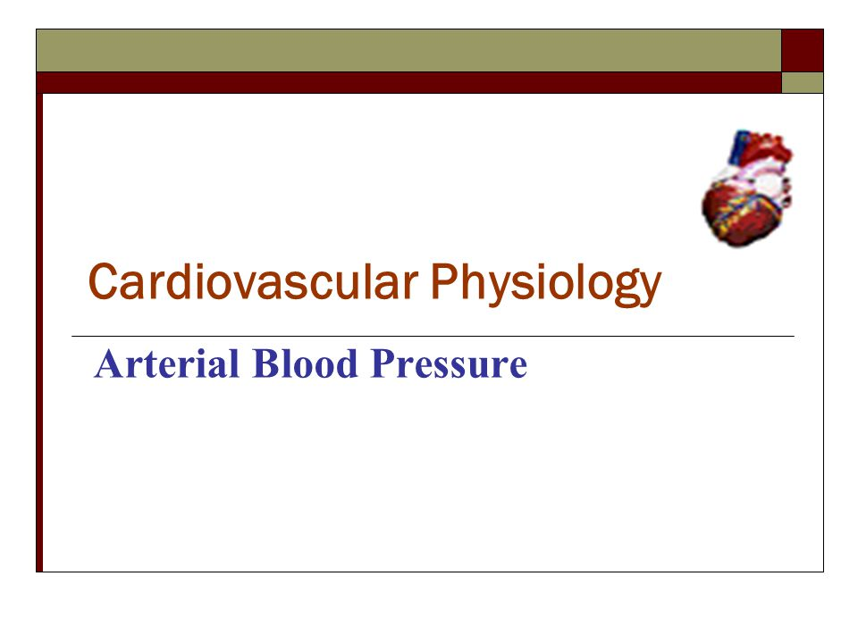 Cardiovascular Physiology Arterial Blood Pressure