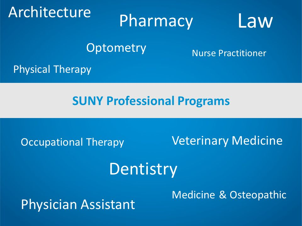 SUNY Professional Programs Architecture Dentistry Law Medicine & Osteopathic Nurse Practitioner Occupational Therapy Optometry Pharmacy Physical Therapy Physician Assistant Veterinary Medicine