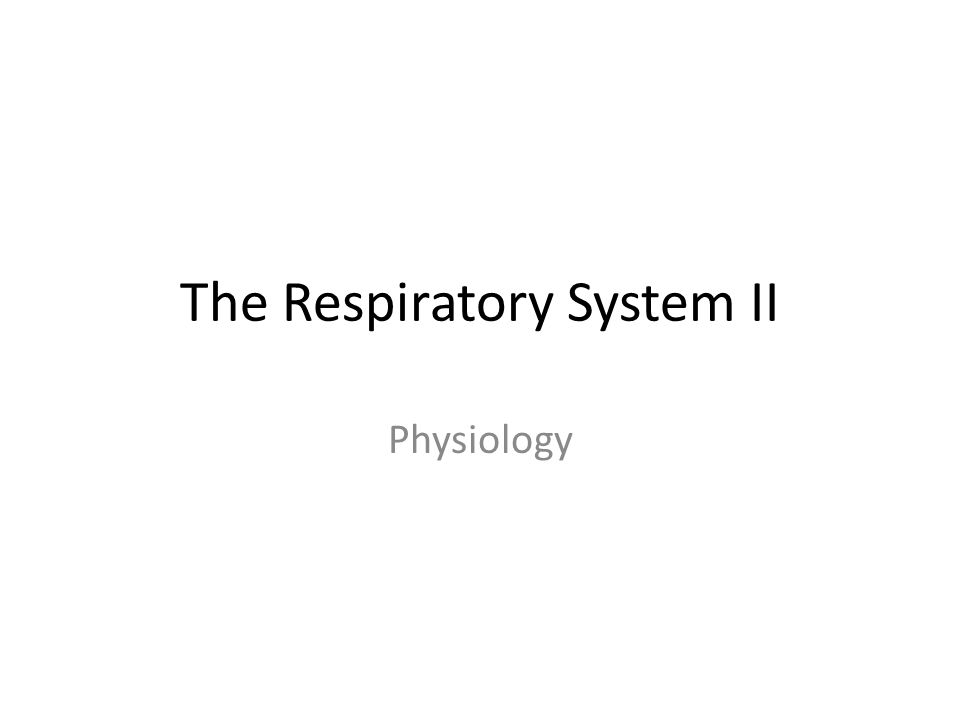 The Respiratory System II Physiology