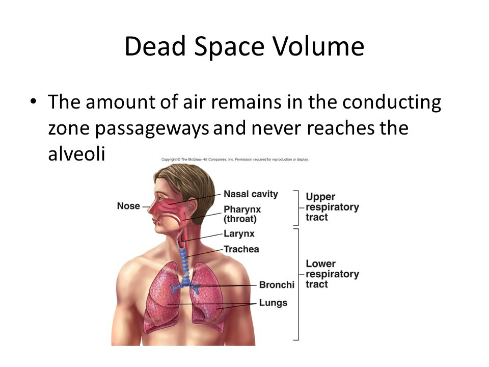 Dead Space Volume The amount of air remains in the conducting zone passageways and never reaches the alveoli