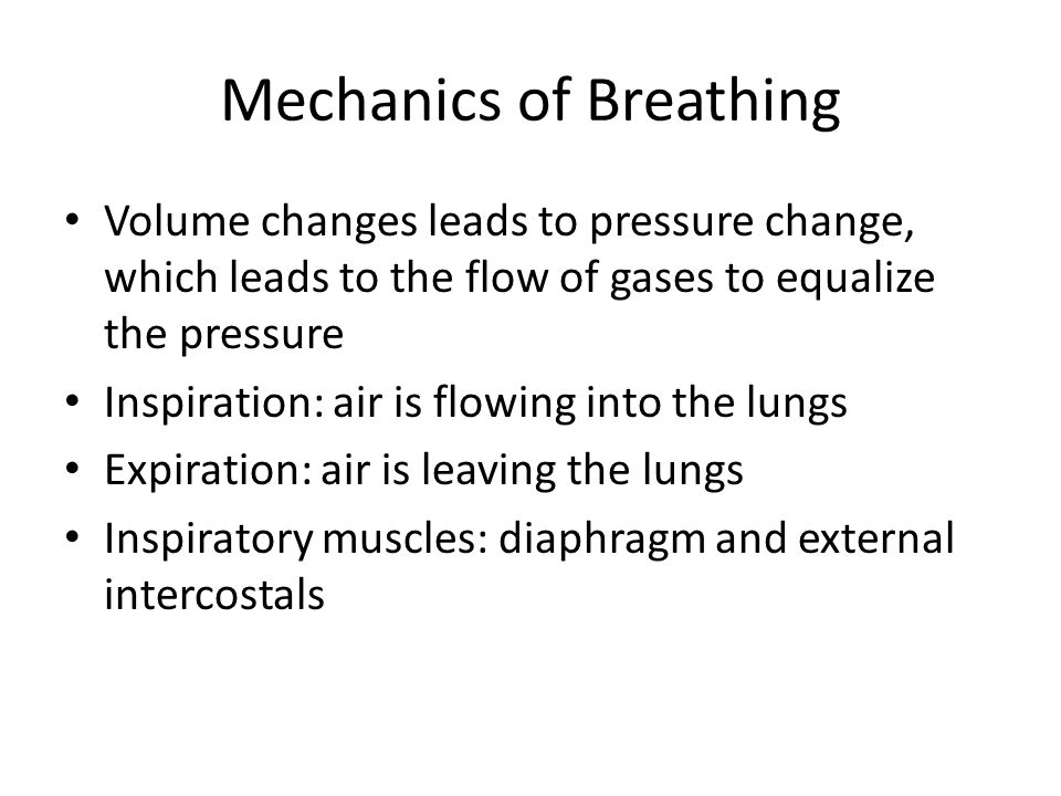 Mechanics of Breathing Volume changes leads to pressure change, which leads to the flow of gases to equalize the pressure Inspiration: air is flowing into the lungs Expiration: air is leaving the lungs Inspiratory muscles: diaphragm and external intercostals