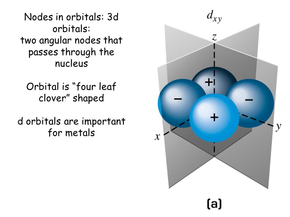 Nodes in orbitals: 3d orbitals: two angular nodes that passes through the nucleus Orbital is four leaf clover shaped d orbitals are important for metals